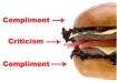 feedback-sandwich